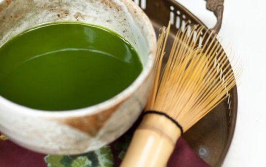Organic Tea Plant