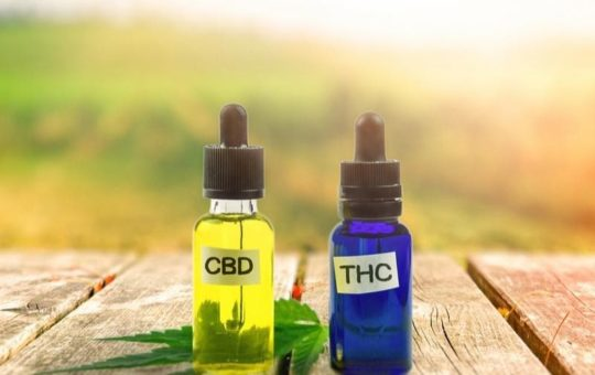 CBD for a Healthy Life