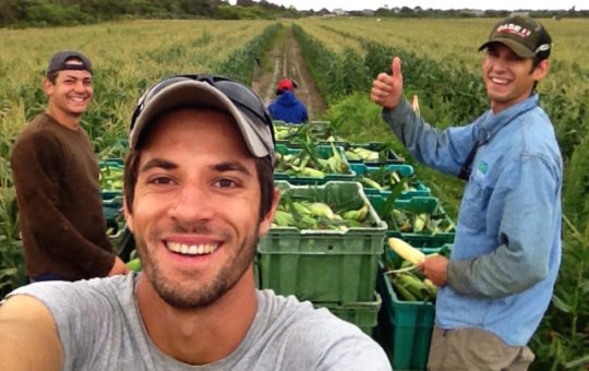 Organic Herb Farm